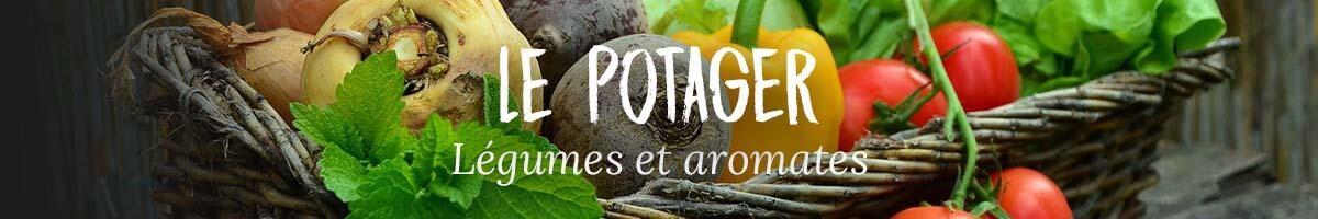 Le potager - Pépinières Naudet