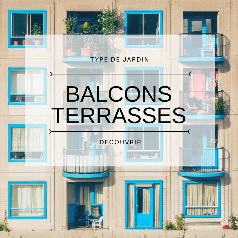 Plantes pour balcons, terrasses ou petits jardins