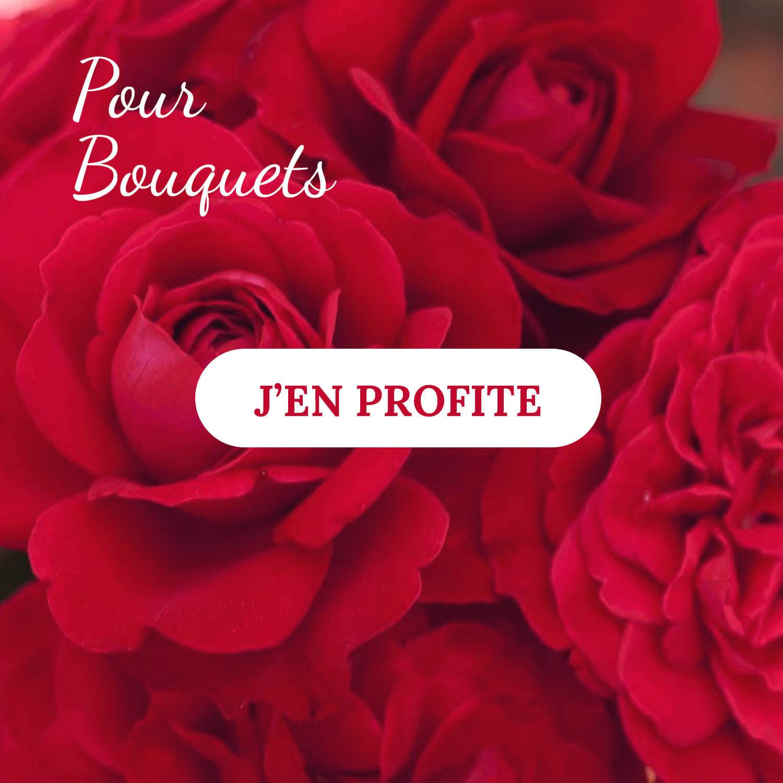 Rosiers pour bouquets - Pépinières Naudet