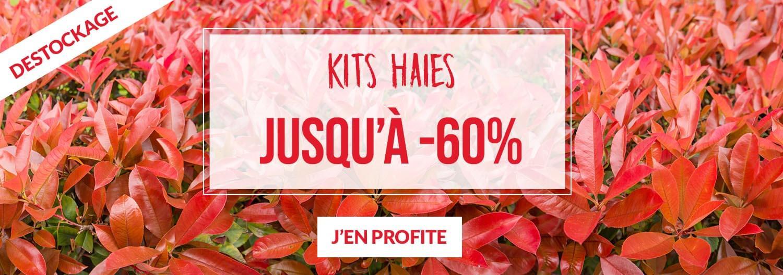 Kits haies jusqu'à -60% - Pépinières Naudet