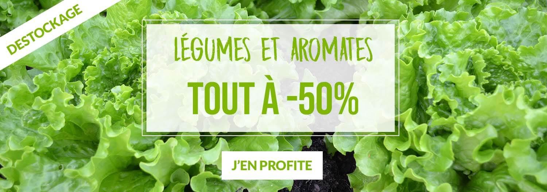 Tout à -50% sur Légumes et aromates - Pépinières Naudet